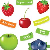 Organic Label on Foods Can Lead Consumers Astray